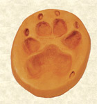 Clay Pawprint memorial